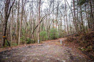Tall Pines Preserve and South Saluda Church Cemetery-19 | by RandomConnections