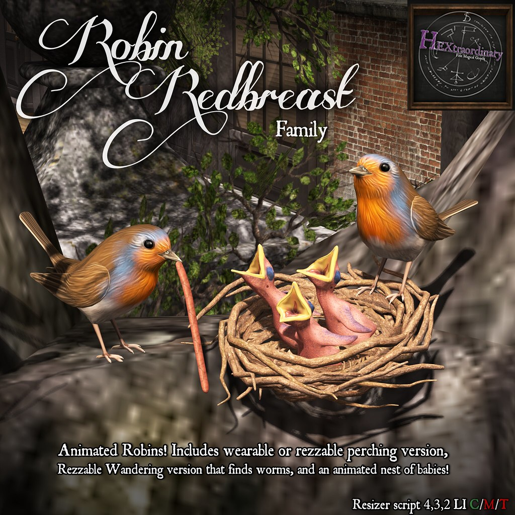 Robin Redbreast Family @ FLF Friday