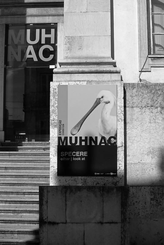 Lisbon_2019_71