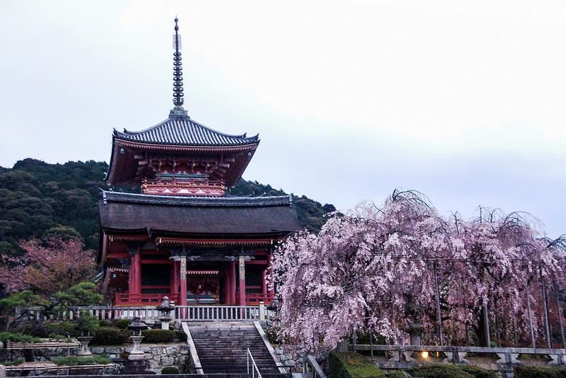 京都清水寺 (3)