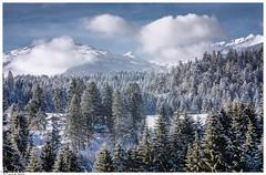 Winter Made in Switzerland