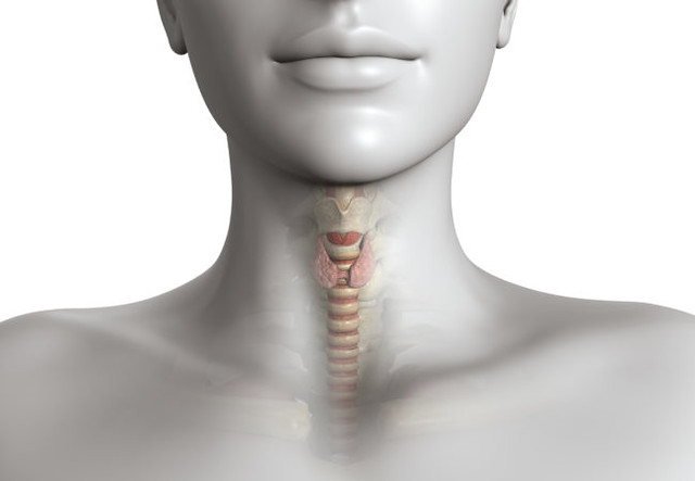 Thyroid Removal Surgery