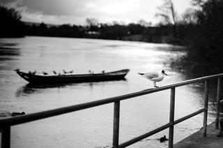 Waiting | by Christina Wieck / Zweitliebefotografie