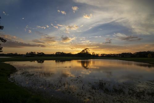 lakemary florida sunset pondscape