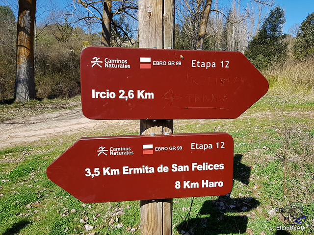 Por los montes de Herrera y el Yermo Camaldulense 14