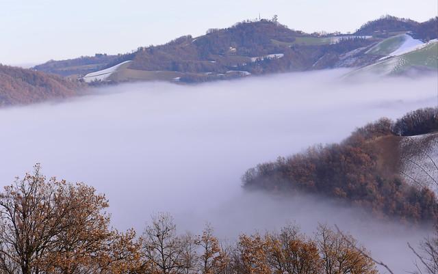 Montecalderaro (Castel S. Pietro T.),  Italy. 23 December 2018 027
