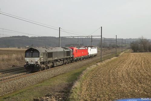 653-04 Crossrail + 193 318 DB Cargo + 193 901 SIEAG . Z 42588 . Warsage . 21.02.19.