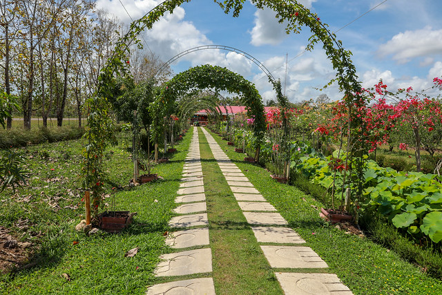 A Spice Farm in Belize