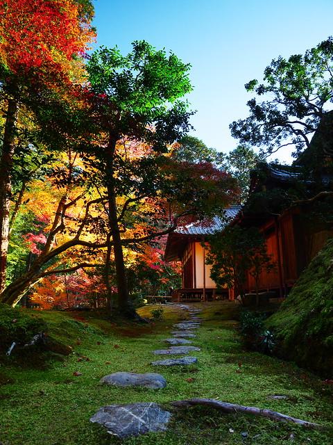 西芳寺(苔寺)觀音堂 Moss garden of Saihoji