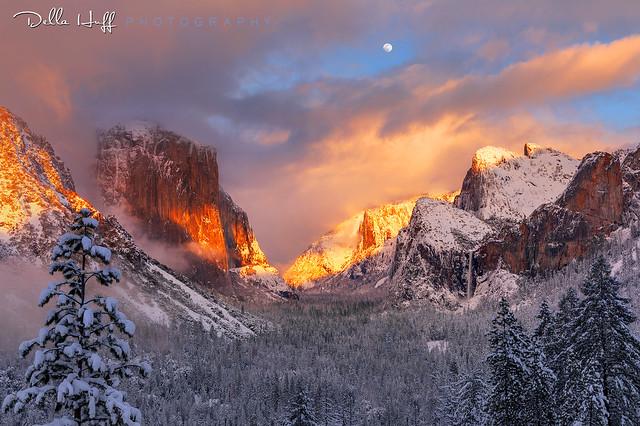 Winter Dream, Yosemite Valley