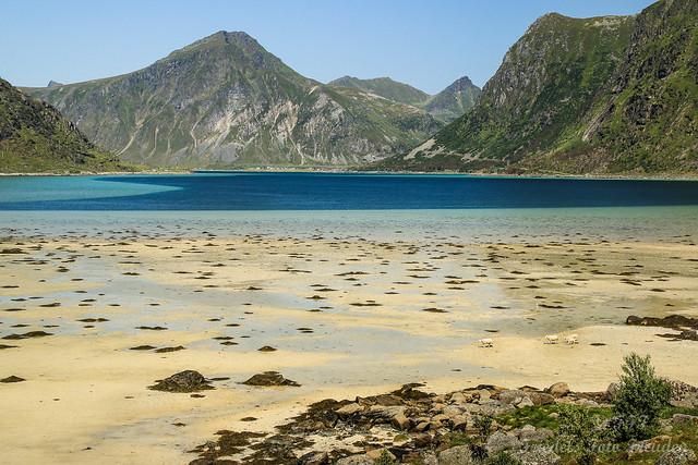 Lofoten beach feeling