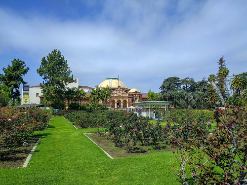 Exposition Park Rose Garden | by RuggyBearLA