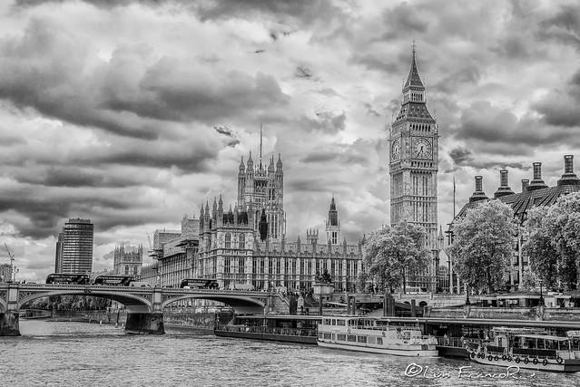 Tamesis and parliament