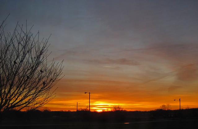 Sunrise (10 March 2019) (Cave City, Kentucky, USA)