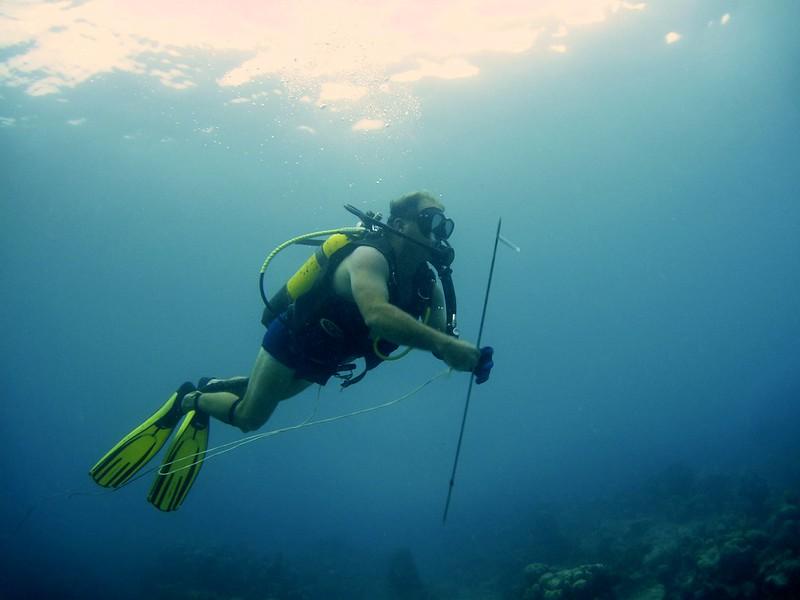 G-July 11th 2012 La Boca Diving Pedro 2622
