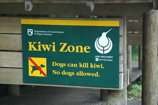 Only in New Zealand - Kiwi Zone