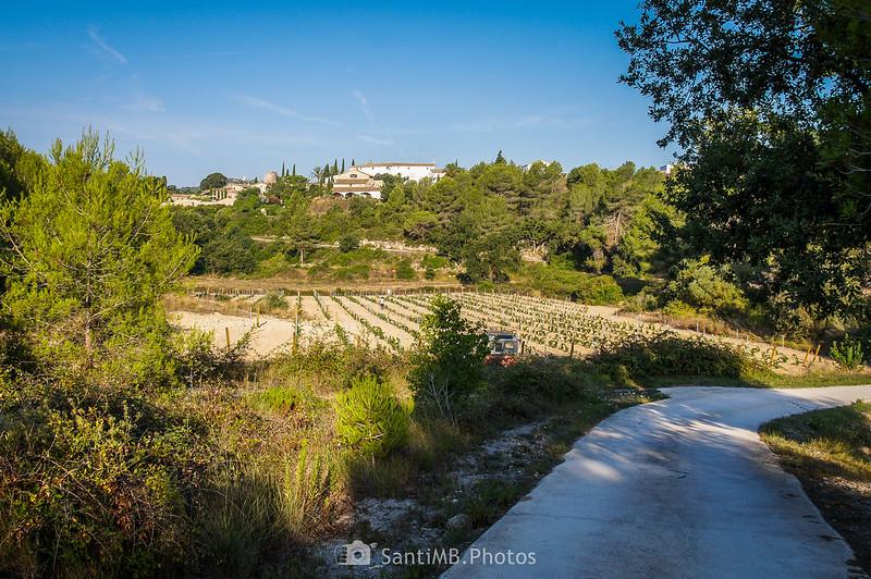 Vista de Viladellops desde el camino a Cal Mingo