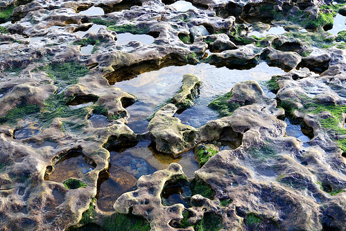 Rock pools | by Dave Russell (1.5 million views thanks)