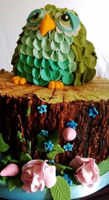 Owl Cake by Shainaz Farouk