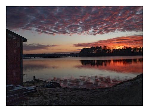 massachusetts unitedstates trees reflections clouds iphone8plus barn shed cranberrybog lake sunrise
