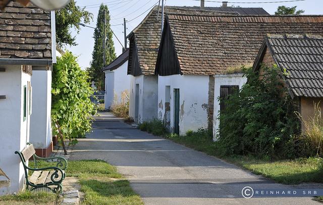Niederösterreich Weinviertel Grosskadolz_DSC0525A