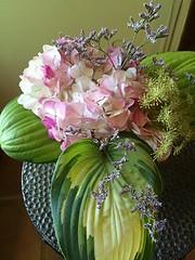 Floralarrangementhyd