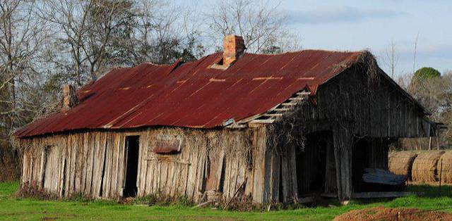 Abandoned Homestead. Panola County,Texas.