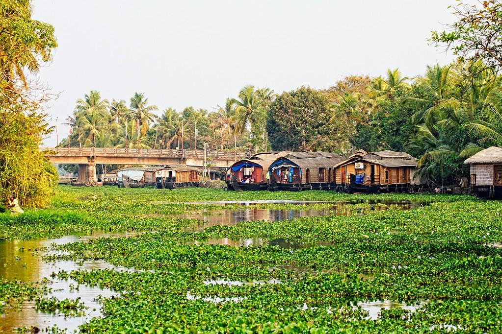 A click of Coconut Lagoon Resort