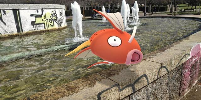 Como pez fuera del agua