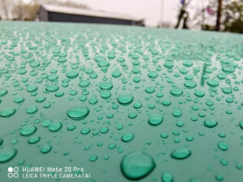 #macro #photography #shot #macro #waterdroplets #droplets #mate20pro #mate20prophoto #mate20pro_camera #Huaweimate20Pro #huaweiphoto #huawei_pic #huaweishot #huaweiphotographers #huawei