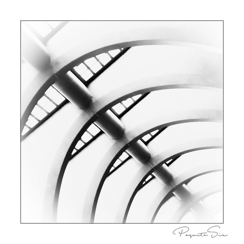 curves | by PaquitaSix