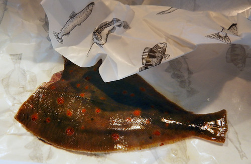 A very memorable fish from Scandinavia: Redspot / Rödspätta (Plaice in English)