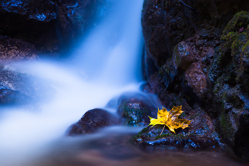 Flowing Autumn | by Theo Crazzolara