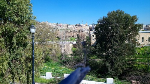Jerash City   by http://www.rumbonseo.com