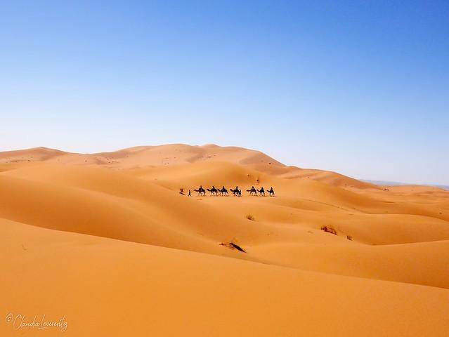 Marokko - Erg Chebbi