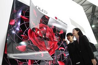 LG디스플레이가 14일부터 17일까지 중국 상하이에서 열리는 중국 최대 가전 박람회 AWE 2019에 처음으로 참가해 OLED TV의 우수성을 알린다. 사진은 65인치 UHD OLED 디스플레이 4장을 이어 붙이고 끝부분을 둥글게 말아 장미꽃 모양을 형상화한 조형물을 관람객들이 보고 있는 모습. | by LG디스플레이