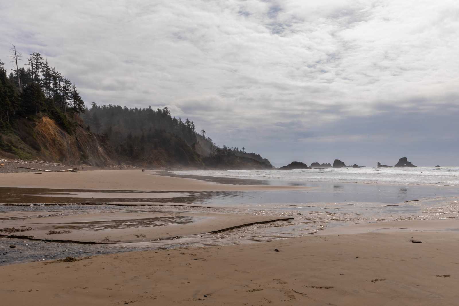 04.01. Oregon Coast