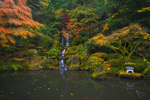 a7rii alpha emount fe1635mmf4zaoss ilce7rm2 japan japanesegarden longexposure multnomah or oregon pdx pacificnorthwest portland portlandjapanesegarden sony washington washingtonpark autumn cascade fall foliage fullframe garden landscape leaves mirrorless reflection trees water waterfall