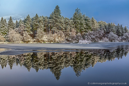 Pine Tree Reflections catching the Sun at Glencoe Lochan-2688 | by Splendid What