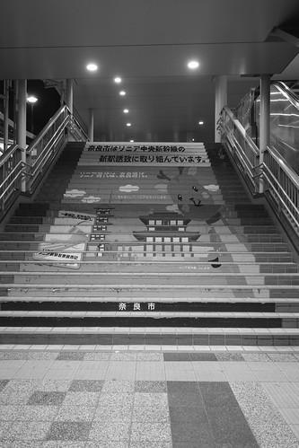 03-04-2019 Nara in early morning (10)