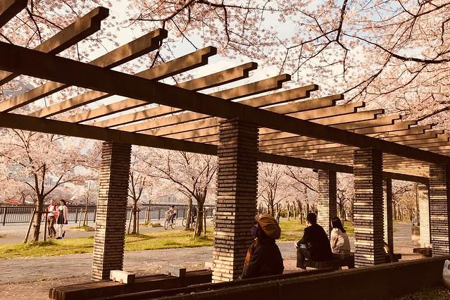 大阪櫻之宮公園