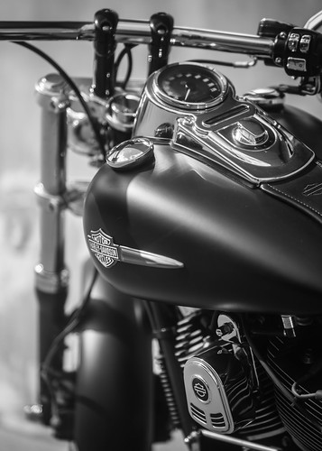 B&W Harley badge | by jean.poitiers