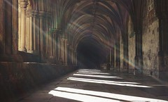 A Magic Moment - Norwich Cathedral Cloisters