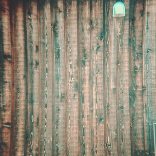 Wood grain | by central-hi