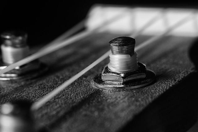 365 - Image 081 - Tuning pegs...