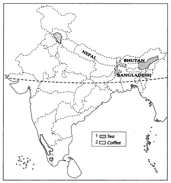 Class 10 Geography Map Work Chapter 4 Agriculture A4