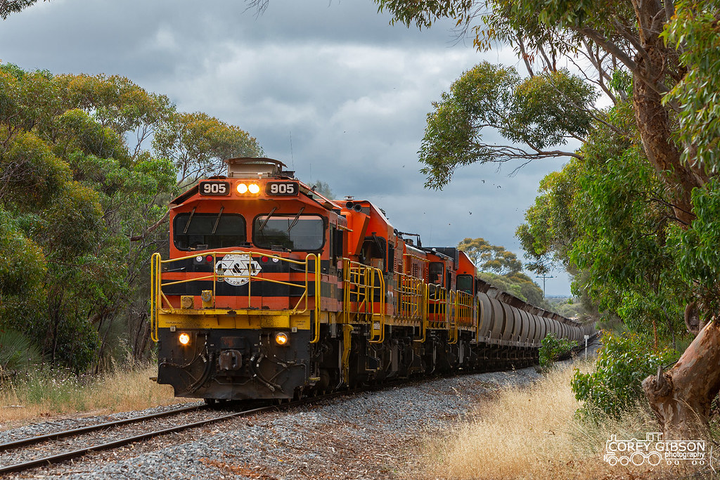 Eyre Peninsula Railway by Corey Gibson