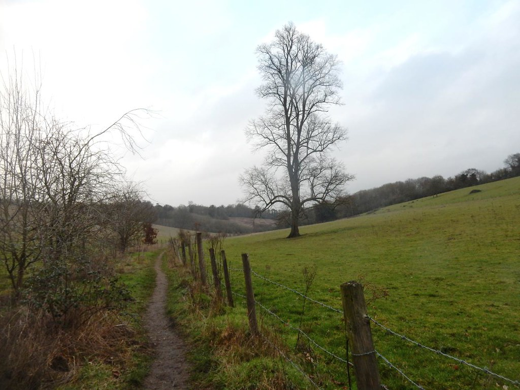 Down through the valley Shiplake to Henley
