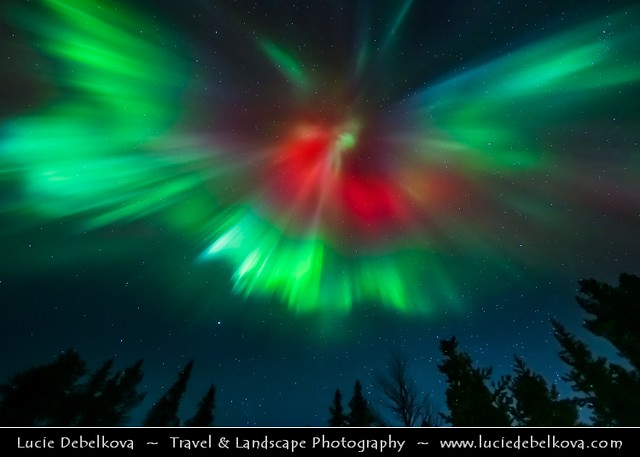 Sweden - North of the Arctic Circle - Lappland during winter time - Aurora borealis - Northern light