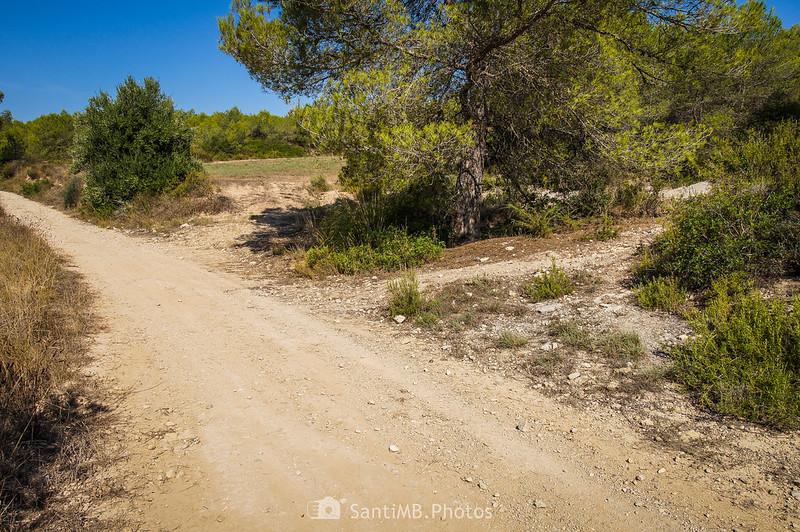 Desvío en el camino de la Caseta a Viladellops